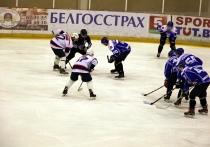 ТОП-3 новостей за неделю: поражение местных хоккеистов, оранжерея с белорусскими бананами и ДТП в центре Витебска