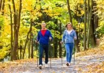 Северный опыт для жаркого лета: скандинавская ходьба насытит кровь кислородом и укрепит организм